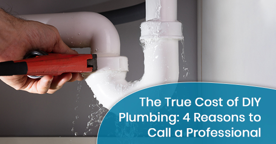 The True Cost of DIY Plumbing: 4 Reasons to Call a Professional